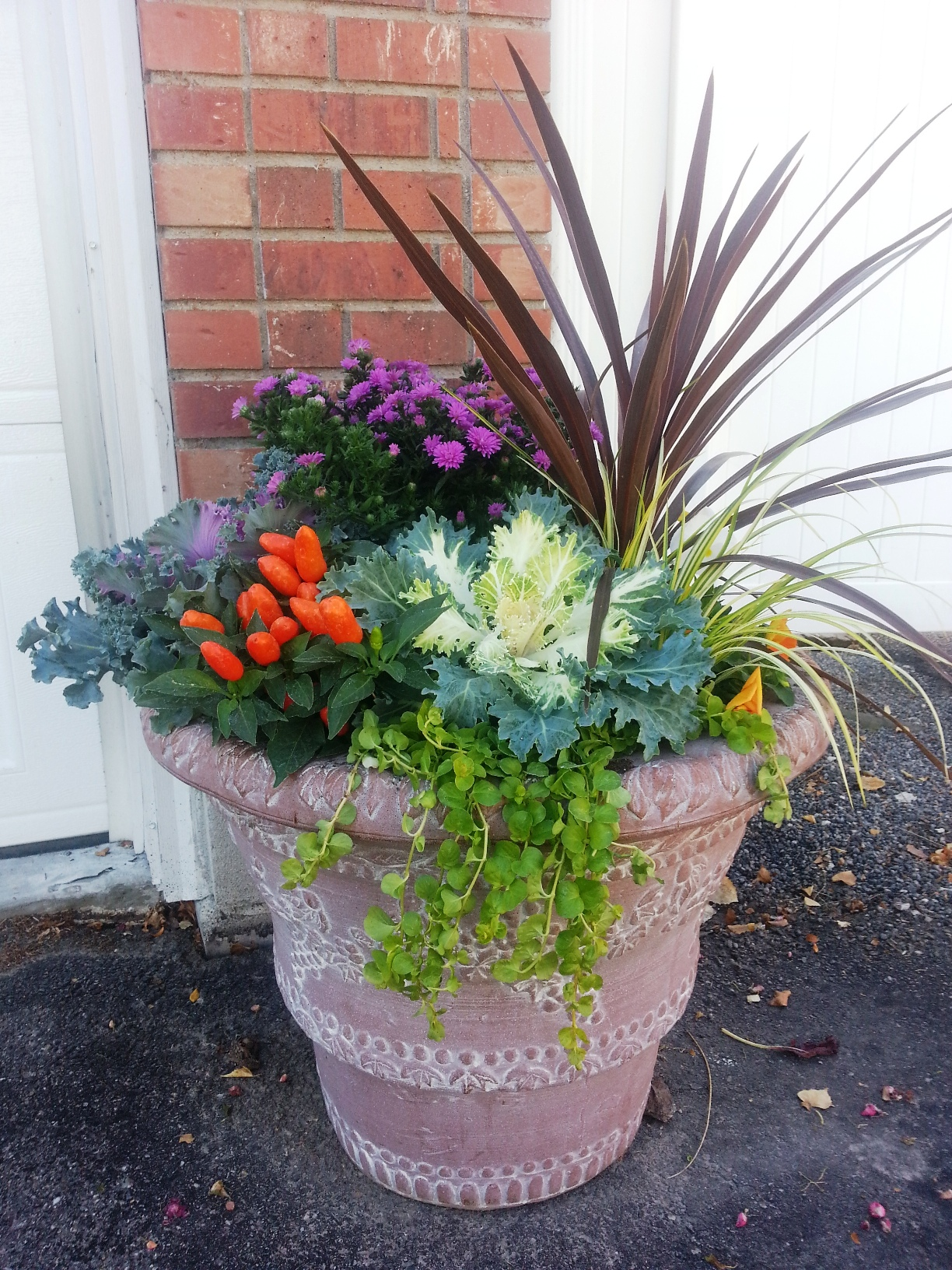 Instant Fall Garden : The joys of container gardening town and country gardens